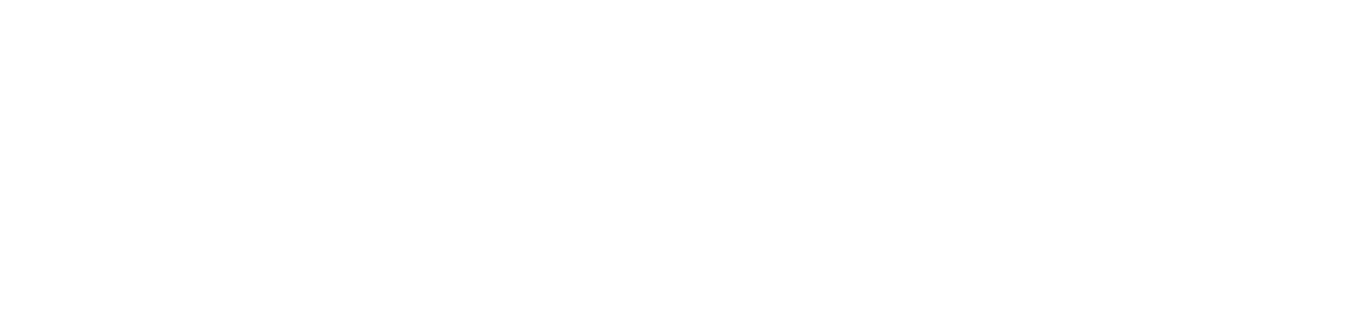 AECF Youth Committee 2018